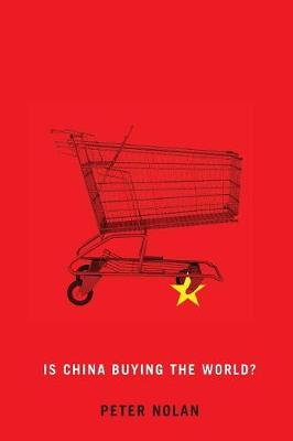 Is China Buying the World? (Paperback)