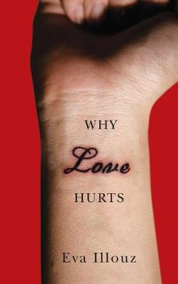 Why Love Hurts: A Sociological Explanation (Hardback)