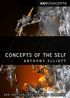 Concepts of the Self - Key Concepts (Hardback)