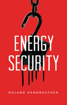 Energy Security (Paperback)