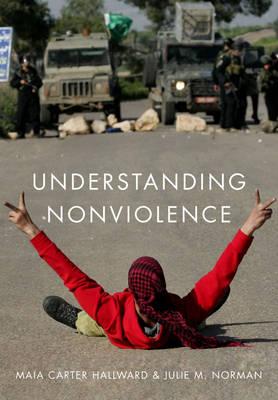 Understanding Nonviolence (Hardback)
