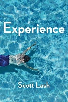 Experience: New Foundations for the Human Sciences (Paperback)