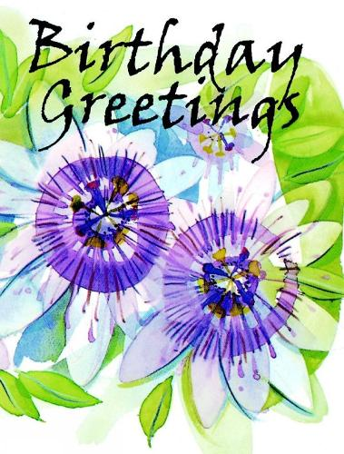 Birthday Greetings - Birthday Minis (Hardback)