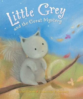 Little Grey and the Great Mystery (Paperback)