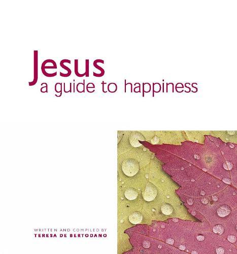 Jesus: A Guide to Happiness (Hardback)