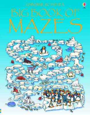 Big Book of Mazes - Mazes (Paperback)