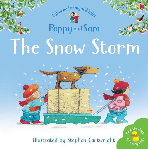 The Snow Storm - Farmyard Tales Minibook Series (Paperback)