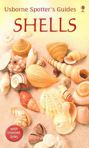 Shells - Spotter's Guide (Paperback)