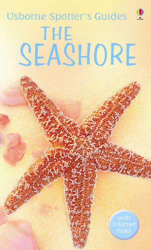 Seashore - Spotter's Guide (Paperback)