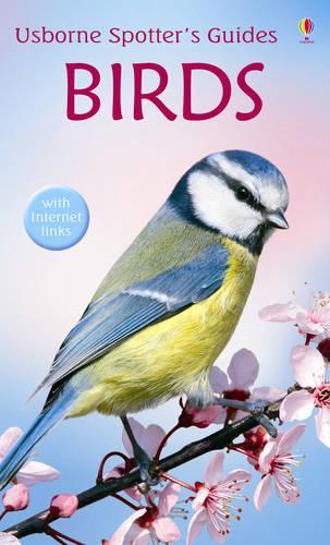 Birds - Spotter's Guides (Paperback)