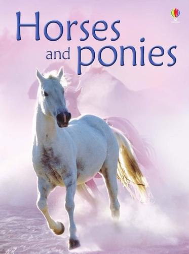 Horses And Ponies - Beginners Series (Hardback)