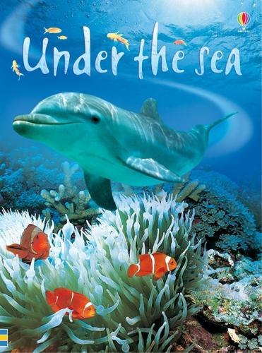 Under The Sea - Beginners Series (Hardback)