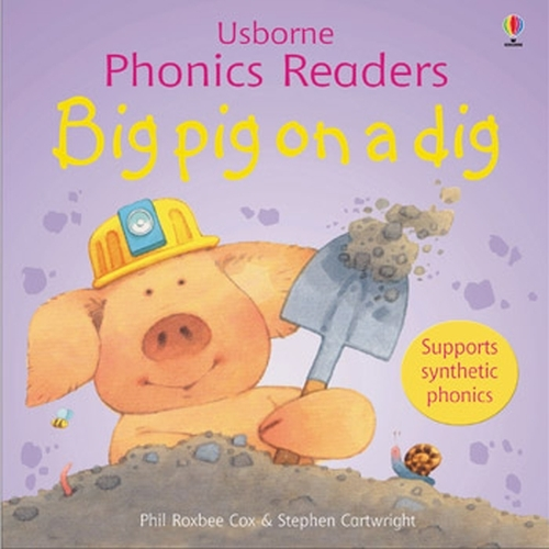 Big Pig On A Dig Phonics Reader - Phonics Readers (Paperback)