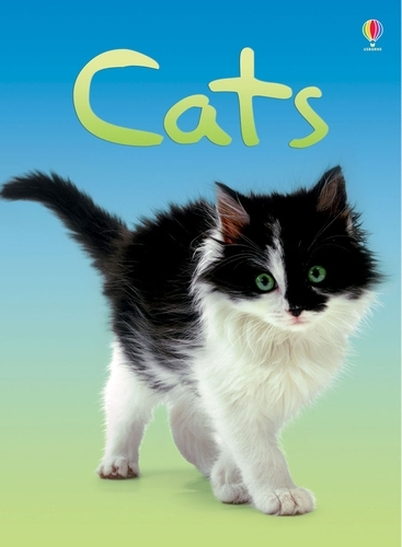 Cats - Beginners Series (Hardback)