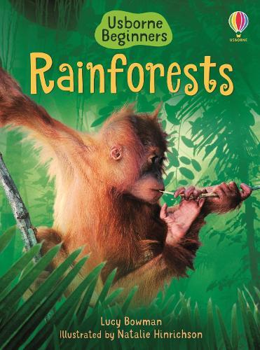 Rainforests - Beginners Series (Hardback)