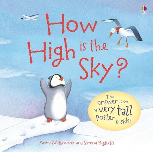 How High is the Sky? - Usborne Picture Storybooks (Hardback)