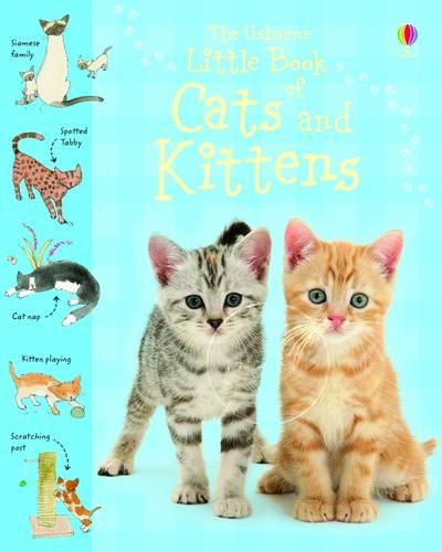Little Book of Cats and Kittens (Hardback)