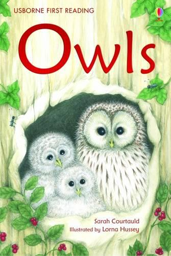 Owls - 2.4 First Reading Level Four (Green) (Hardback)