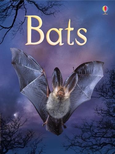 Bats - Beginners Series (Hardback)