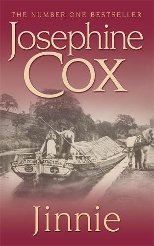 Jinnie: A compelling saga of love, betrayal and belonging (Paperback)