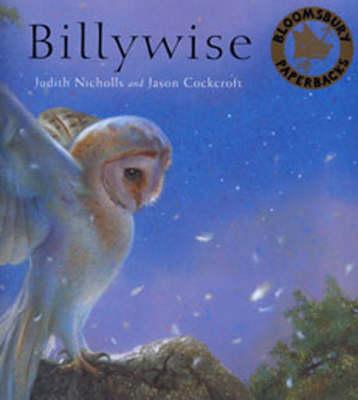 Billywise (Paperback)