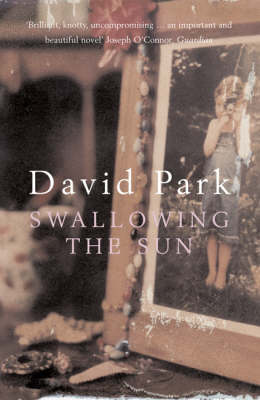 Swallowing the Sun (Paperback)
