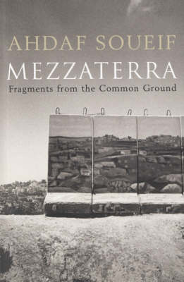 Mezzaterra: Fragments from the Common Ground (Paperback)
