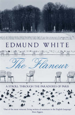 The Flaneur: A Stroll Through the Paradoxes of Paris (Paperback)