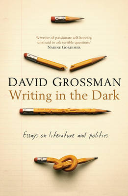 Writing in the Dark (Paperback)