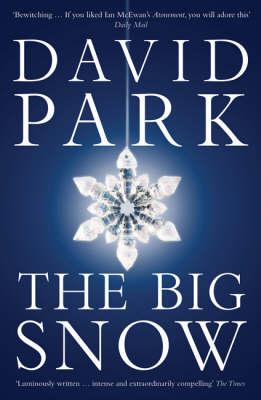 The Big Snow (Paperback)