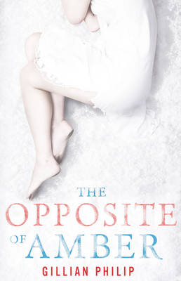 The Opposite of Amber (Paperback)