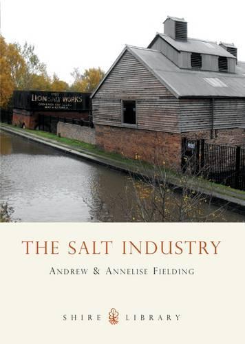 The Salt Industry - Shire album 452 (Paperback)