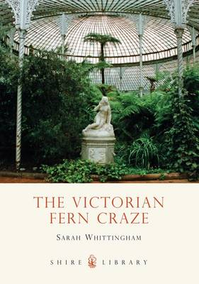 The Victorian Fern Craze - Shire Library No. 571 (Paperback)