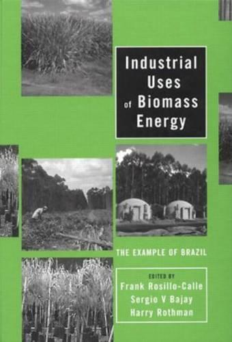 Industrial Uses of Biomass Energy: The Example of Brazil (Hardback)