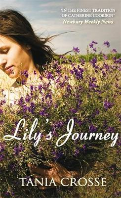Lily's Journey (Paperback)