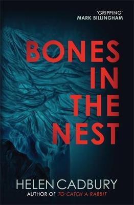 Bones in the Nest - The Sean Denton Series 2 (Paperback)
