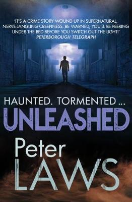 Unleashed - Matt Hunter (Paperback)