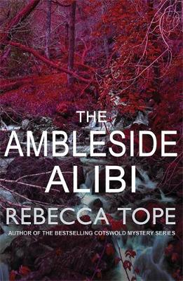The Ambleside Alibi - Lake District Mysteries (Paperback)
