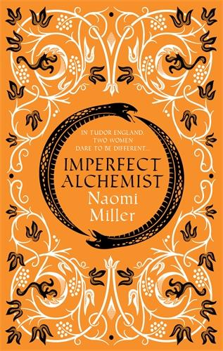 Imperfect Alchemist: A spellbinding story based on a remarkable Tudor life (Hardback)