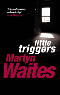Little Triggers - Stephen Larkin (Paperback)