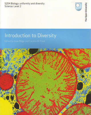 Introduction to Diversity (Paperback)