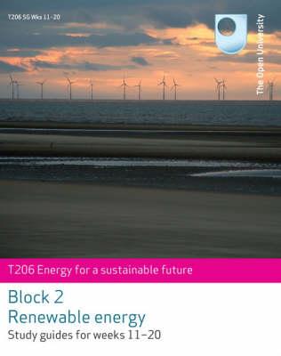 Renewable Energy (Paperback)