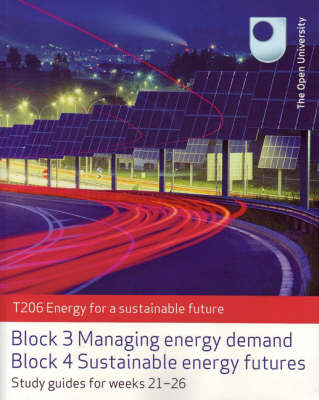 Managing Energy Demand and Sustainable Energy Futures (Paperback)