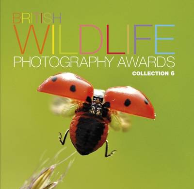 British Wildlife Photography Awards: Collection 6: Collection 6 (Hardback)