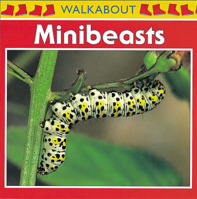 Minibeasts - Walkabout (Paperback)