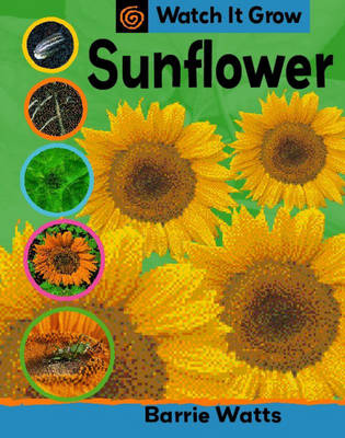 Sunflower - Watch it Grow 26 (Paperback)