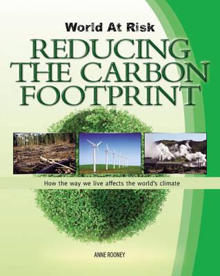 Reducing the Carbon Footprint - World at Risk (Hardback)