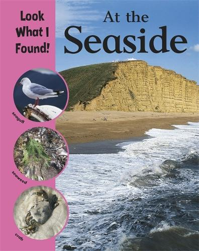 Look What I Found!: At The Seaside - Look What I Found! (Paperback)