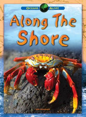 Along The Shore - Oceans Alive (Hardback)