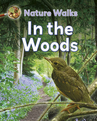 In the Woods - Nature Walks 4 (Hardback)